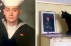 """Er tritt in den Militärdienst, und seine Katze """"wartet"""" jeden Tag vor seinem Foto auf der Kommode"""