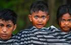Brincadeiras da genética: quase todos nesta tribo indonésia têm lindos olhos azuis