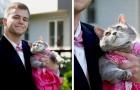 Er hatte niemanden, der mit ihm zum Schulball geht, also nahm er seine Katze mit