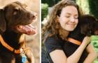 Mujer despedida por haberse ausentado del trabajo después del fallecimiento de su perro: