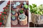 Transformez les troncs en bois en de fantastiques pots et jardinières pour la maison et le jardin