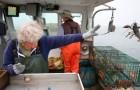 Esta abuelita de 101 años continúa trabajando a bordo de un barco pesquero y no tiene ninguna intención de abandonarlo