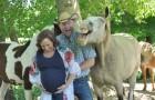 Un cavallo ruba la scena alla coppia che voleva celebrare il nascituro con un servizio fotografico