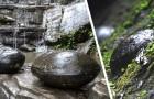 In China is er een berg die elke 30 jaar mysterieuze stenen eieren