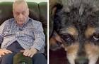 En hund hittar en blind man som halkat på marken och tack vare sitt skall räddar den hans liv