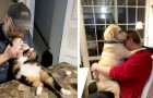 """""""Ich will keine Tiere zwischen den Beinen"""": 15 Personen, die ihre Meinung geändert haben und jetzt nicht mehr auf ihre pelzigen Freunde verzichten können"""