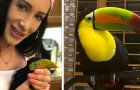 Cette femme n'est pas partie en vacances depuis deux ans pour s'occuper de son toucan domestique qui a peur d'être abandonné