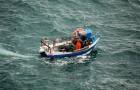 Ils survivent 29 jours en pleine mer en mangeant des oranges, des noix de coco et en buvant de l'eau de pluie