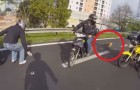Some bikers find a small dog on the road: their intervention is vital !