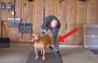 Lo que este hombre hace por su perro es de verdad ESPECIAL