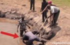 A five days old elephant is in danger ... here's how these angels saved his life !
