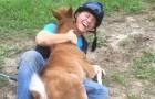 Een meisje verwelkomd een kleine pony en wordt op een geweldige manier ontvangen!