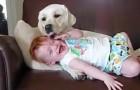 De hond knuffetje haar als een puppy... haar reactie is hilarisch!