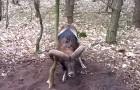 Un animale selvatico è in pericolo: ciò che fa questo ragazzo è da vero EROE