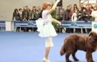 Zij begint met dansen, maar haar gigantische hond is de ster van de show!