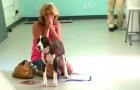 Her dog can walk againg after 3 months: the reaction of this woman? I'm in tears !