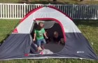 A mom films the children playing in the tent, but when they try to get out of it something goes wrong!