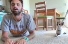 Deze man besluit om zijn yogasessie te filmen en wordt daarbij vergezeld door een bijzondere partner...