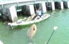 Une pêche insolite... et vous allez comprendre pourquoi! WOOOW!