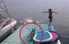 Mentre prende lezioni di nuoto, questo cagnolino fa morire tutti dalle risate