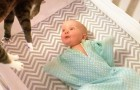 Mom comes in the room with the cat in her arms. The reaction of this newborn baby? ADORABLE