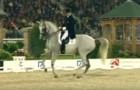 Ein wunderschönes Pferd kommt auf die Reitbahn. Als die Musik beginnt, ist das Publikum sprachlos