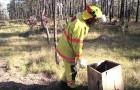 Ein Feuerwehrmann findet eine Schachtel im Wald... und sein Leben verändert sich für immer