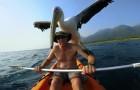 Ein Mann rettet einen Pelikan, der mit 3 Monaten verletzt wurde: Heute ist ihre Verbindung unvorstellbar