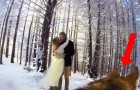 A couple let their DOG film their wedding video: the result is pure magic !