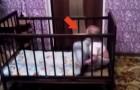 Ein Baby ist im Laufstall.. Wie er ausbricht, ist genial