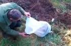 Un uomo trova un sacco in mezzo a un campo... il contenuto vi farà inorridire