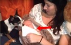 Ein Hund bemerkt, dass das Baby schläft... So süß