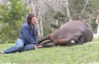 Just sit on the ground next to a horse ... What happens next will immediately take your breath away!