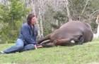 Hon sätter sig på marken nära hästen. Det som händer just efter kommer att få er att häpna