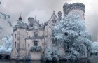Nature slowly takes over a beautiful French medieval royal castle: the result is MAGICAL!