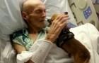 Deze honden komen naar het ziekenhuis om hun baasjes te troosten: het effect is verrassend!