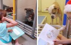 I bambini leggono libri davanti ai cani del canile: gli effetti sono sorprendenti