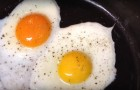 Only one of the two eggs came from a free range farm -- Can you tell which one?