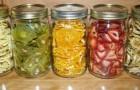 Leer hoe je zelf overheerlijk gedroogd fruit kan maken