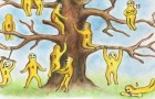 Choisissez 2 des personnages sur l'arbre: c'est un petit test pour en savoir un peu plus sur vous