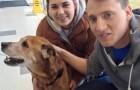 Adottano un cane di 17 anni e scrivono una promessa: le loro parole sono commoventi