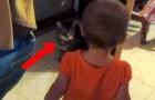 Una niña se acerca a su gato: no se pierdan la conversacion maravillosa que mantienen