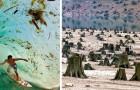 Siamo in pericolo: queste 27 immagini allarmanti ce lo dimostrano