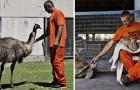 I detenuti entrano nel rifugio per animali maltrattati: un'iniziativa dai risultati sorprendenti
