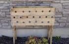 Hij boort 19 gaten aan de zijkant van een plantenbak. 5 maanden later is het resultaat spectaculair!