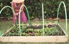 Ze bevestigt 4 hoepels over een plantenbak. Briljant!