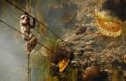 Honing verzamelen met je blote handen en op duizelingwekkende hoogte: deze foto's laten een eeuwenoud ritueel zien
