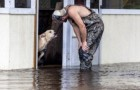 Vede un cane abbandonato durante un'alluvione: l'incontro cambierà la vita di enrambi