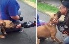 He found the dog that he had lost long ago --- Their reunion is so joyous and heartwarming!