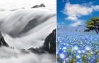 Il concorso National Geographic dedicato ai viaggiatori: le prime immagini sono mozzafiato